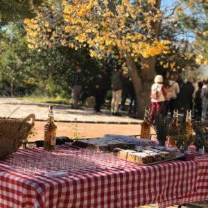 Experiencia Rural en Onil Pack Familiar 20 personas