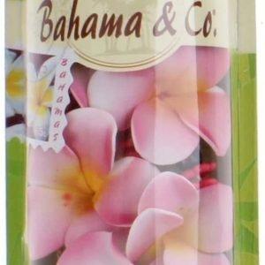 Bahama & co, bahneck ambientador coche, armario, hogar... waikiki wild hibisco cadena aromática ver