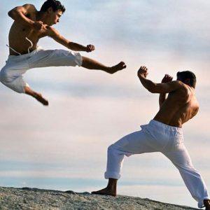 rendimiento artes marciales